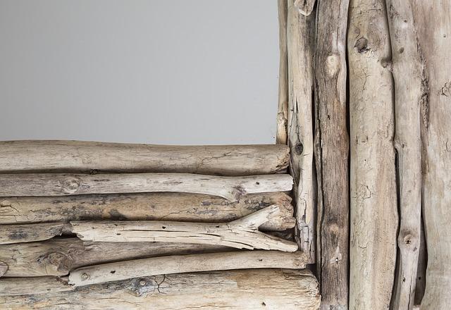 madera lavada por el mar espejo