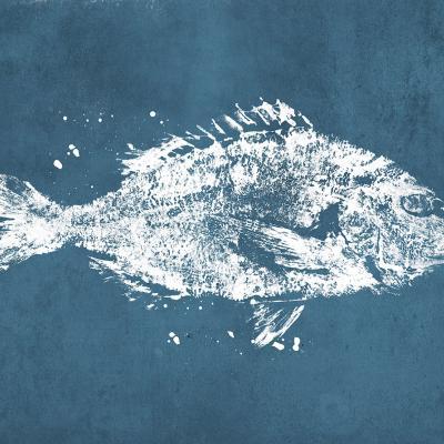 pez azul papel pintado
